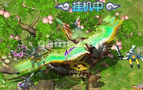 千年龙须鹤 2.jpg